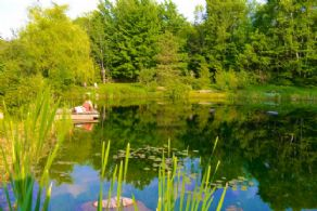 Main Pond - Country homes for sale and luxury real estate including horse farms and property in the Caledon and King City areas near Toronto