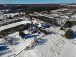 Lofty Pines Farm, Caledon, Ontario - Country homes for sale and luxury real estate including horse farms and property in the Caledon and King City areas near Toronto