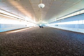 Indoor Arena with Fibre Footing - Country homes for sale and luxury real estate including horse farms and property in the Caledon and King City areas near Toronto