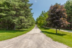 Long Private Driveway - Country homes for sale and luxury real estate including horse farms and property in the Caledon and King City areas near Toronto
