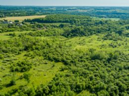 10 Acre Lot, Caledon, Ontario - Country homes for sale and luxury real estate including horse farms and property in the Caledon and King City areas near Toronto