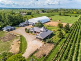 Gallop Stables, Niagara-on-the-Lake - Country Homes for sale and Luxury Real Estate in Caledon and King City including Horse Farms and Property for sale near Toronto