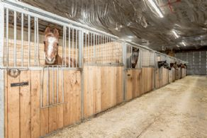 South Aisle with Removable Stalls - Country homes for sale and luxury real estate including horse farms and property in the Caledon and King City areas near Toronto