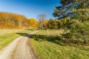 Driveway - Country homes for sale and luxury real estate including horse farms and property in the Caledon and King City areas near Toronto