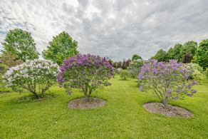 Lilac Grove - Country homes for sale and luxury real estate including horse farms and property in the Caledon and King City areas near Toronto