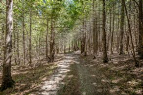 Hiking Trails - Country homes for sale and luxury real estate including horse farms and property in the Caledon and King City areas near Toronto